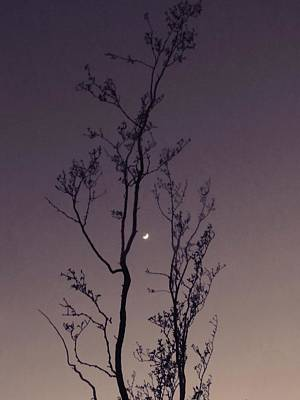 Photograph - Waxing Moon In Aquarius by Judy Kennedy