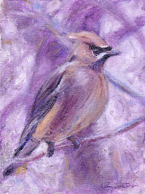 Waxwing Original by Quin Sweetman