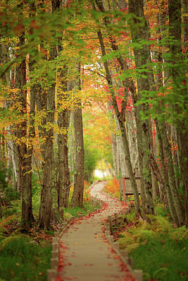 Way To Sieur De Monts  Art Print