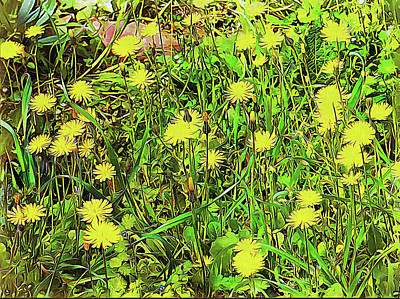 Digital Art - We Are A World Of Dandelions by Dorothy Berry-Lound