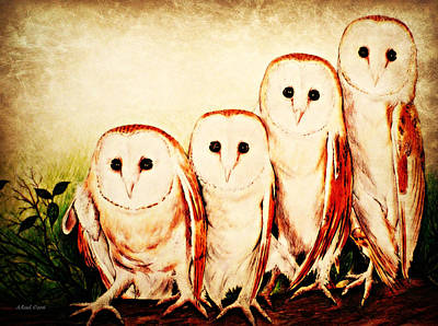 Barn Owl Drawing - We Are Family by Andrew Read