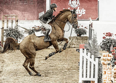 Warmblood Photograph - We Are Winners by Betsy Knapp