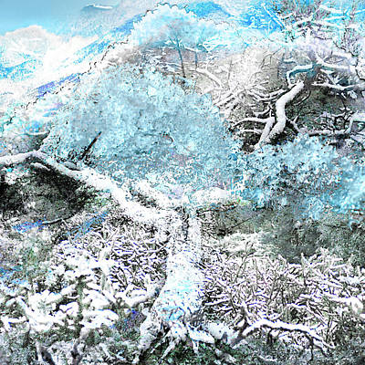 Photograph - We Are Winter-  We Are Consciousness Having This Experience by Arthur BRADford Klemmer