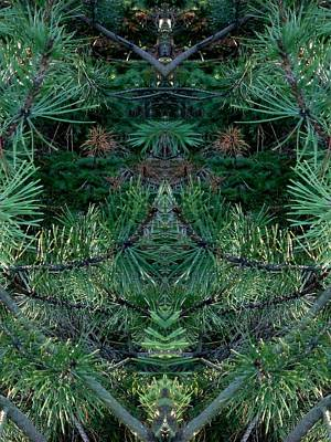 We Live In The Pines Art Print by Marilynne Bull