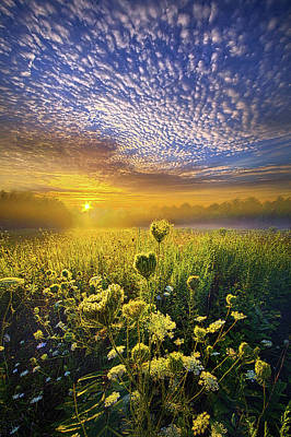 Unity Photograph - We Shall Be Free by Phil Koch