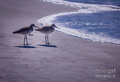 Egret Landscape Photograph - We Stand Together by Marvin Spates