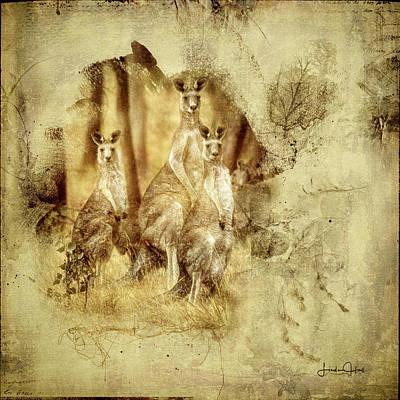 Kangaroo Digital Art - We Three Roos by Linda Hall