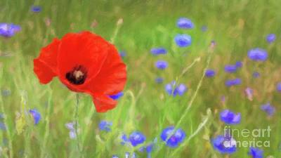 Poppies Field Painting - We Will Remember Them by Sarah Kirk