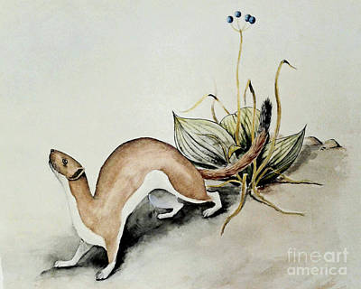 Painting - Weasel And Snake Berry by Art MacKay