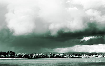 Photograph - Weather Of The Times by Janie Johnson