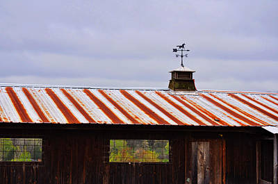 Photograph - Weather Vane by JAMART Photography