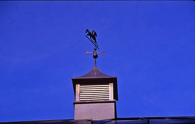 Weather Vane Art Print by Randy Muir