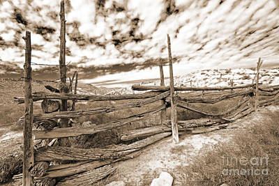Photograph - Weather Worn Fence In Sepia by Mary Haber