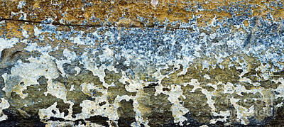 Photograph - Weathered And Worn  by Tim Gainey