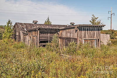 Photograph - Weathered Barn And More by Sue Smith