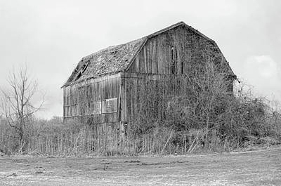Photograph - Weathered Barn by Ann Bridges