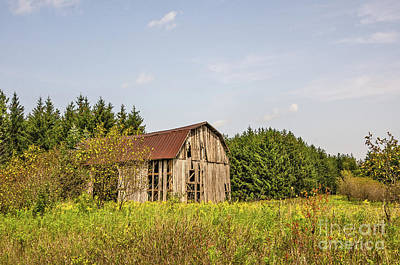 Photograph - Weathered Barn Basking In The Summer Sun by Sue Smith