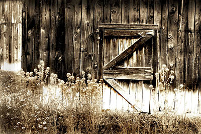 Art Print featuring the photograph Weathered Barn Door by Gray  Artus