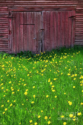 Photograph - Weathered Barn Spring by Alan L Graham