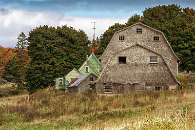 Photograph - Weathered Barn by Verena Matthew