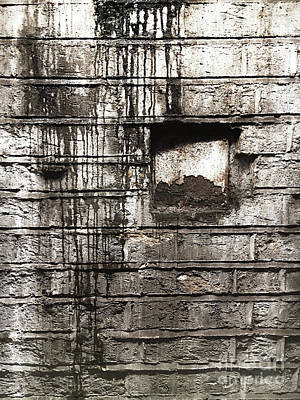 Photograph - Weathered Brick Wall by Tom Gowanlock