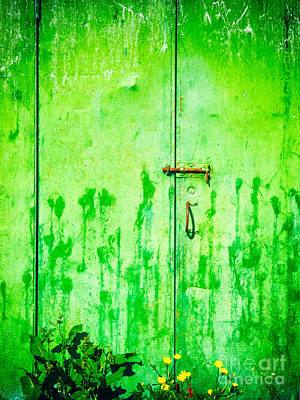 Photograph - Weathered Door With Flowers by Silvia Ganora