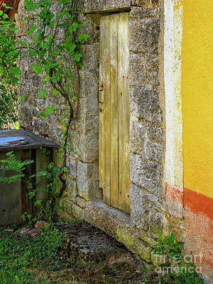 Photograph - Weathered Entrance by Patricia Hofmeester