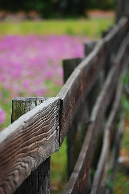 Weathered Fence Art Print