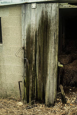 Photograph - Weathered by Melissa Newcomb