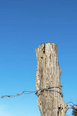 Photograph - Weathered Old Post With Barbwire by Kennerth and Birgitta Kullman