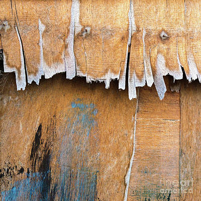 Photograph - Weathered by Patti Schulze