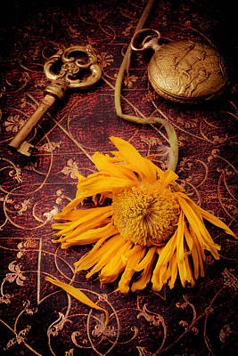 Weathered Sunflower With Gold Key Art Print by Garry Gay