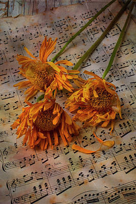 Weathered Sunflowers Art Print by Garry Gay
