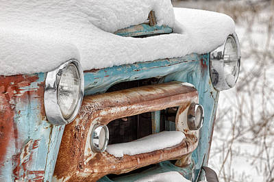 Photograph - Weathering The Storm Close-up by Denise Bush