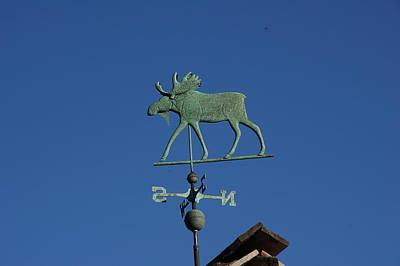 Weathervane Moose Original