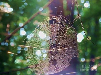 Railroad - Weave Me A Web by Paul Beanblossom