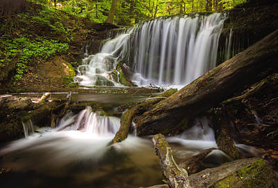 Weavers Creek Falls Art Print by Cale Best