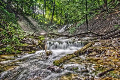 Weaver's Creek Falls Art Print by Irwin Seidman