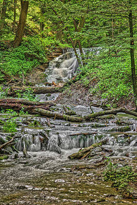 Photograph - Weavers Falls by Irwin Seidman
