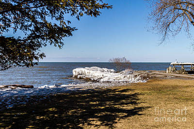 Photograph - Webster Park by William Norton