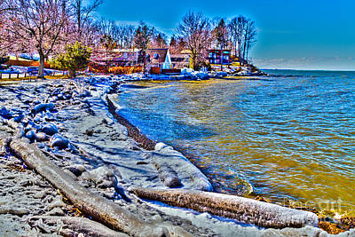 Photograph - Webster Shoreline by William Norton