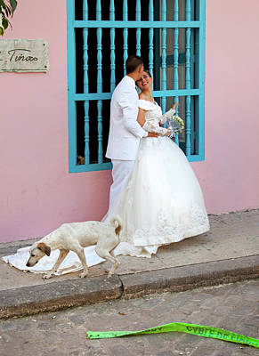Photograph - Wedding Couple With Dog Havana Cuba by Charles Harden