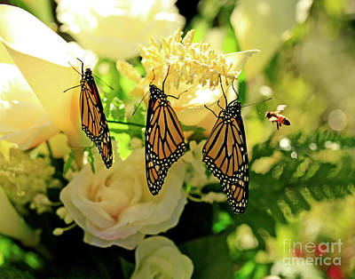 Photograph - Wedding Flowers, Butterflies And Bee Photo by Luana K Perez