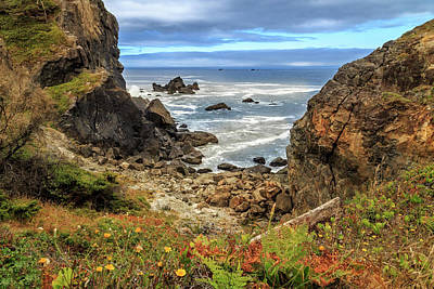 Photograph - Wedding Rock At Patrick's Point by James Eddy