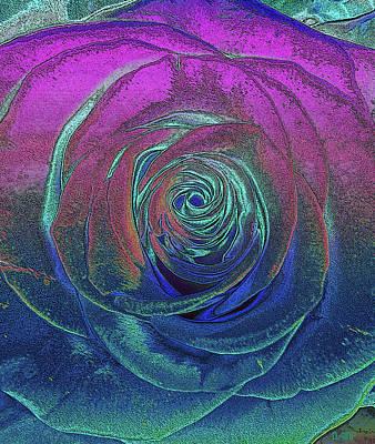 Photograph - Wedding Rose 2 by David Pantuso
