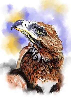 Wedgetailed Eagle Australian Bird Art Print by Lorraine Kelly