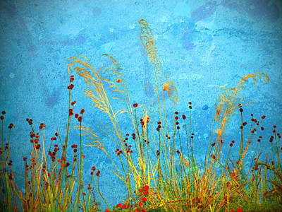 Photograph - Weeds And Water by Tara Turner