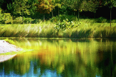 White River Scene Mixed Media - Weeds And Water by Terry Davis
