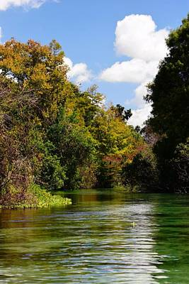 Photograph - Weeki Wachee Autumn by Sheri McLeroy