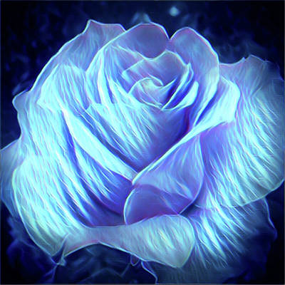 Digital Art - Weeping Blue Rose  by Gayle Price Thomas